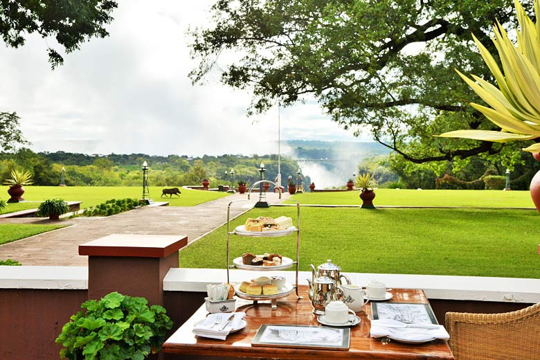 Afternoon tea with passing warthog and bridge view, Victoria Falls Hotel - photo courtesy of Victoria Falls Hotel