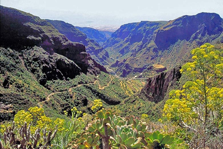 Barranco de Guayadeque - photo courtesy of Gran Canaria Tourist Board