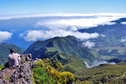 9 reasons to add Madeira to your bucket list
