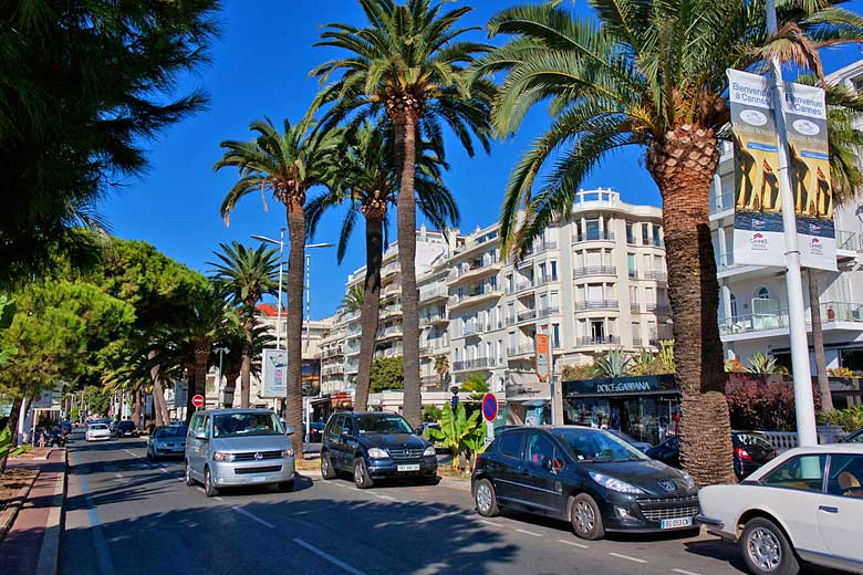 The palm shaded Boulevard de la Croisette in Cannes © Dmitry Vetrov - Flickr Creative Commons