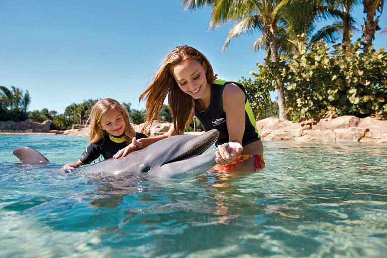 Swimming with dolphins, Discovery Cove © SeaWorld Orlando