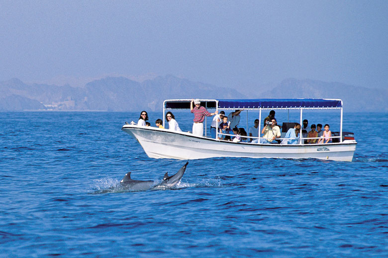 Dolphin watching, Muscat, Oman - photo courtesy of Oman Tourism