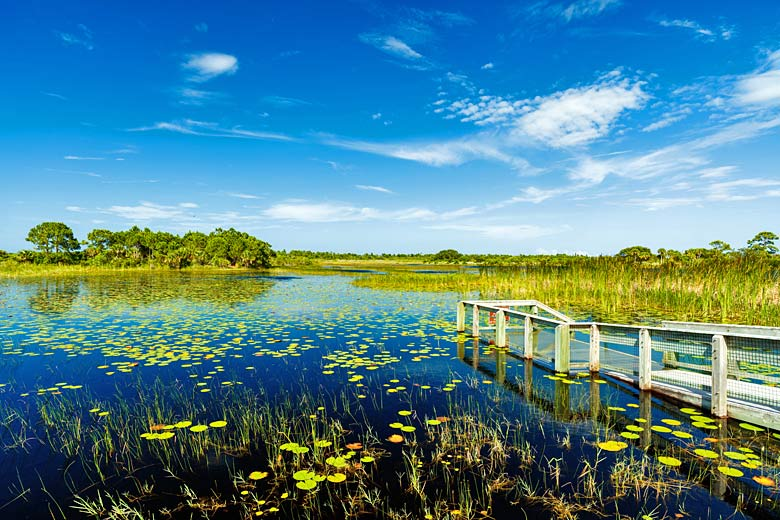 The Everglades National Park, Florida © Fotoluminate LLC - Fotolia.com