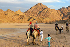 Excursions from Sharm el Sheikh for 2016