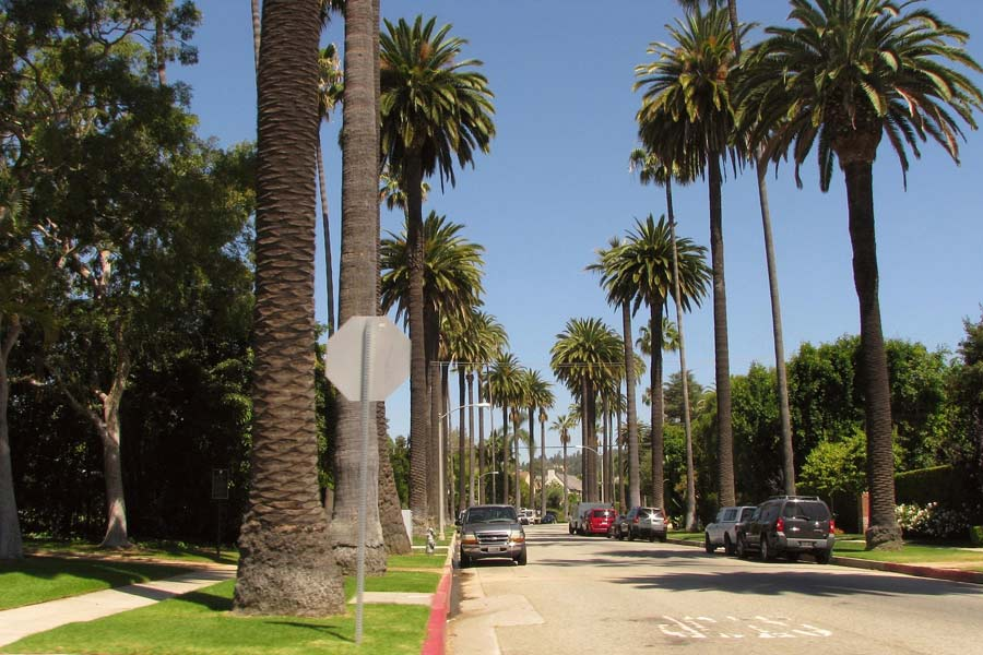 Guide to LA without a car © librarychik - Flickr Creative Commons