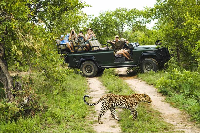 Guided game drive off the tarmac road, Kruger National Park © Biker3 - Fotolia.com