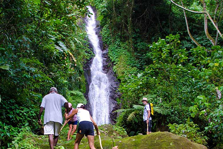 Hiking one of the many forest trails in Grenada - photo courtesy of Grenada Tourism Authority