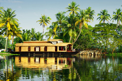Top tips for visiting Kerala, India