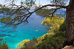 Ibiza excursions: Best beaches, markets, day trips & more