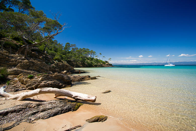 Beach and shoreline on Île de Porquerolles © Donnerbold - Fotolia.com