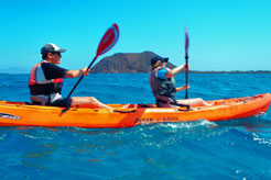 7 activities for all the family in Fuerteventura