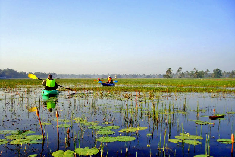 Kayaking on the Sal River Backwaters, Goa, India - photo courtesy of www.GoaKayaking.com