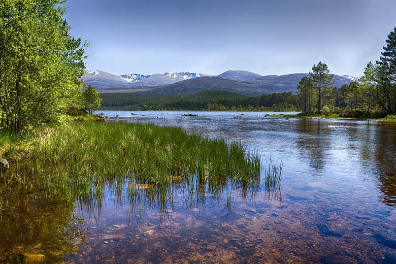 Loch Morlich with the Cairngorm mountains beyond © Leegillion - Adobe Stock Image