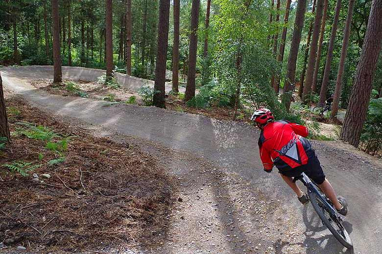 The purpose-built Altura Trail in Whinlatter Forest © Crown Copyright - courtesy of Forestry Commission
