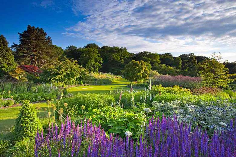 RHS Garden Harlow Carr © Royal Horticultural Society (RHS)