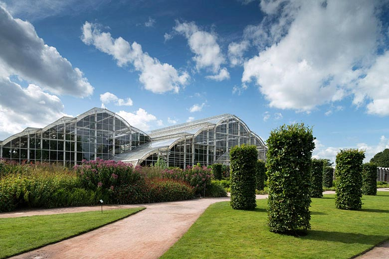 RHS Wisley Glasshouse, Woking, Surrey © Royal Horticultural Society (RHS)