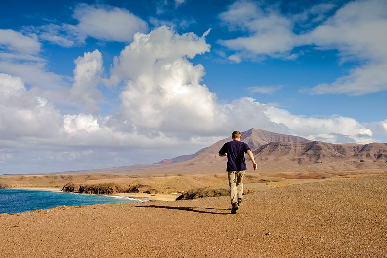 Open spaces on a sunny day in Lanzarote, Canary Islands © Image'in - Adobe Stock Image