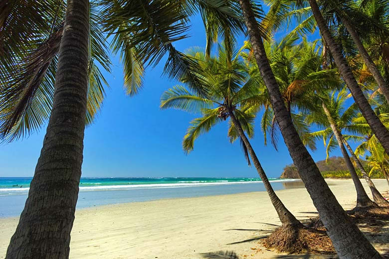 The most memorable Costa Rica coast experiences © Rob Francis - Alamy Stock Photo