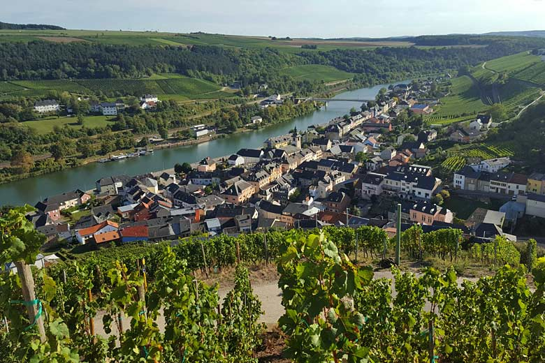 Vineyards along the banks of the Moselle River, Luxembourg © Kirsten Henton