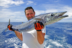Cape Verde fishing: Independent, organised & big game trips