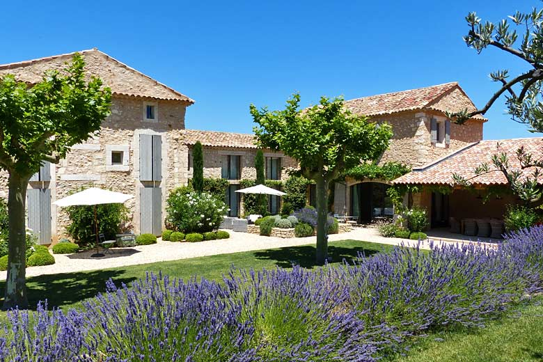 Walk among the lavender in Luberon, France - photo courtesy of Airbnb