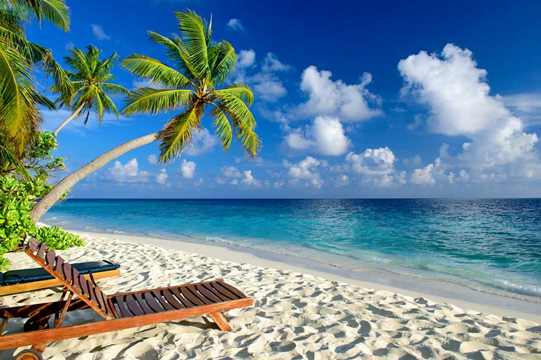 A palm-lined beach in the Maldives © Loocid GmbH - Fotolia.com