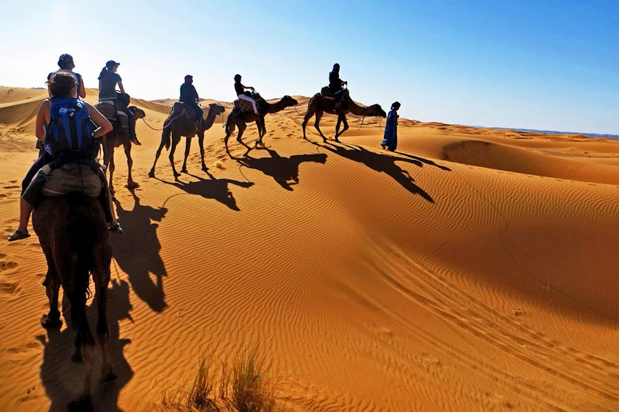 By camel across the dunes at Erfoud © ANDR3W A - Flick Creative Commons