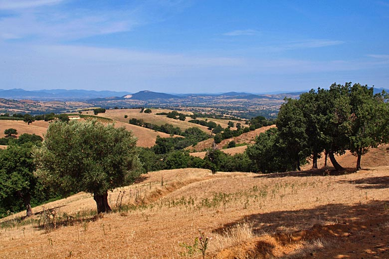 Even the green hills of Tuscany turn brown in summer © Uwe Albert Thiele - Fotolia.com