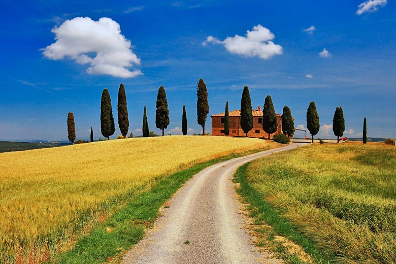 A hot summer's day in Tuscany, Italy © Zsolt Biczó - Fotolia.com