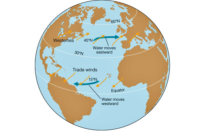 How trade winds and westerlies affect ocean currents © Brooks/Cole - Thomson