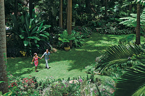 Hunte's Gardens, Barbados - Courtesy of Barbados Tourism Authority