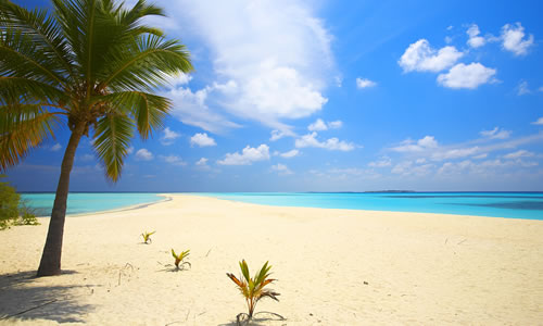 Tropical beach on the island of Kuredu in the Maldives © Matsonashvili Mikhail
