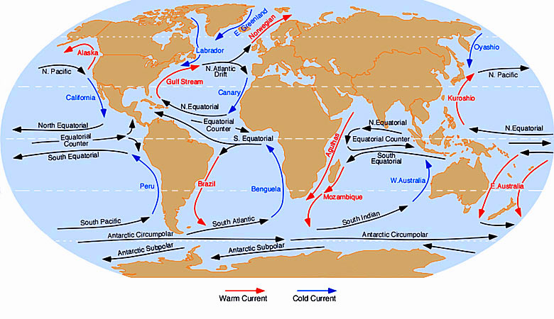 Guide to the world's ocean currents - courtesy of Dr. Michael Pidwirny
