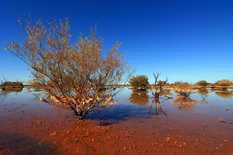 South Australia flooded desert © Eddy - Flickr Creative Commons