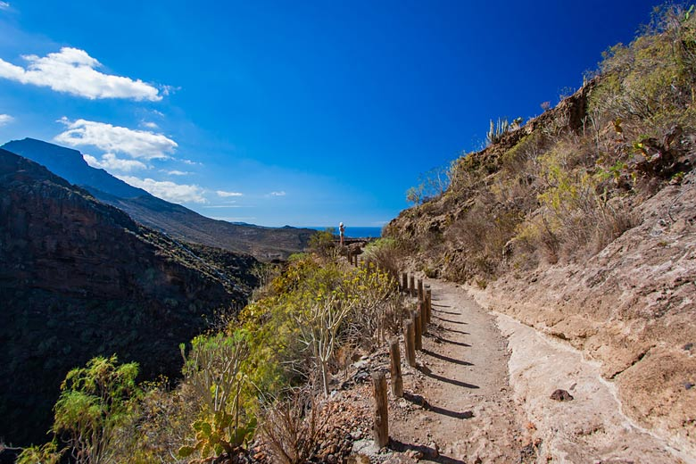 June marks the beginning of dry summer weather in Tenerife with little or no rain