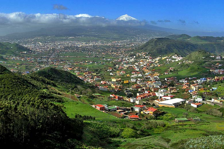 After winter rains, March is the greenest month of the year in Tenerife